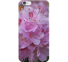 April Azalea iPhone Case/Skin