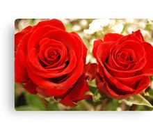 Rose's Are Red Canvas Print