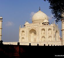 Taj Mahal - Agra - INDIA   by bala sundaram