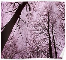 Branches 2 pink Poster