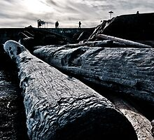 More logs by farcaphoto