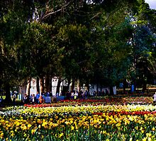 Floriade Gardens by artexpress