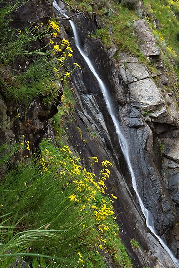 Rebecca Falls by Travis Easton