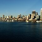 Seattle panoramic view by farcaphoto