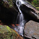 Somersby Falls - NSW Australia by Bev Woodman