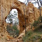 Golden Gully - Tambaroora NSW Australia by Phil Woodman
