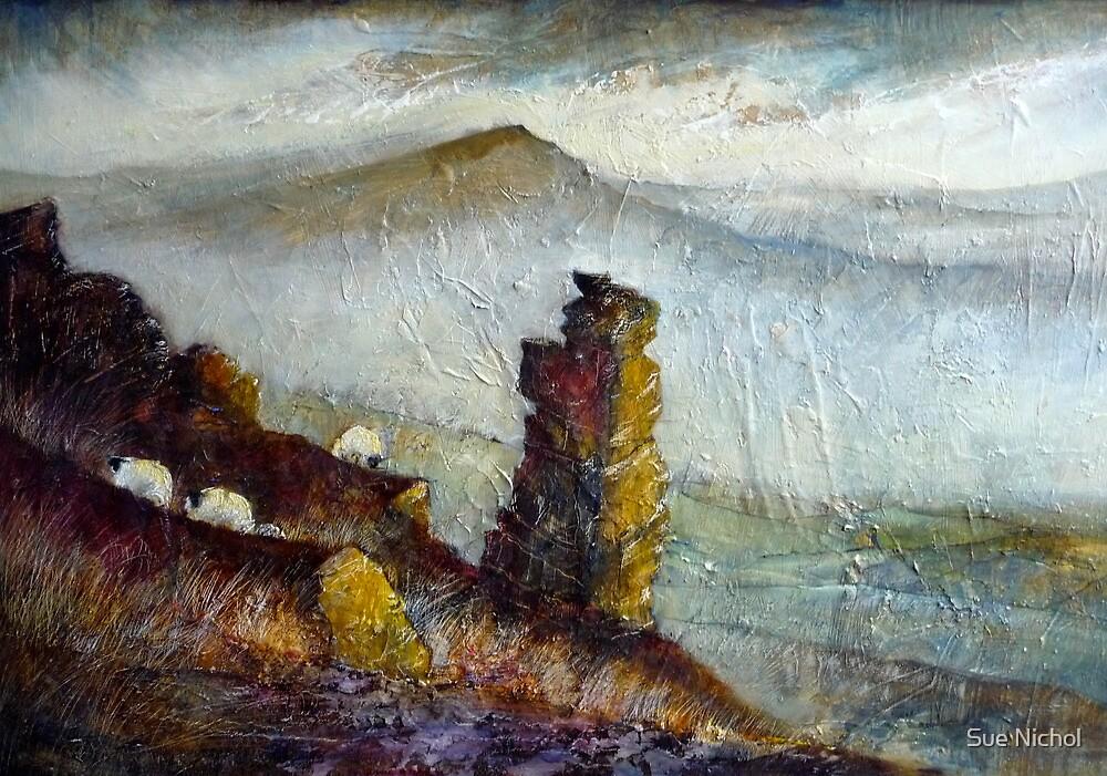 On The Edge by Sue Nichol