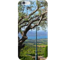 View from Gassin over the Bay of Saint Tropez, France iPhone Case/Skin