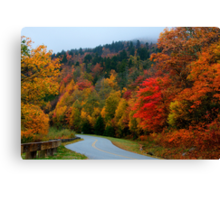 Blue Ridge Parkway Canvas Print