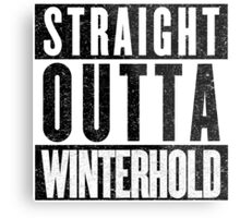 Adventurer with Attitude: Winterhold Metal Print