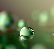 Macro drops on a disc by Jip van Kuijk