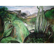 landscape Queenstown Tas. Photographic Print