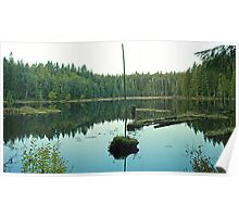 Texas Ponds Panorama Poster