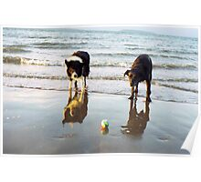 Indy and Shela at the beach Poster