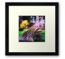 Autumn Storm in the Garden Framed Print