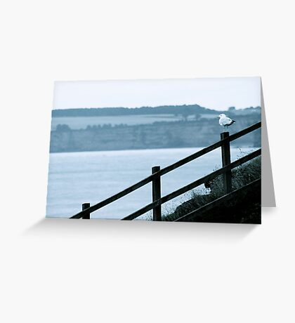 Seagull On Beach Fence Greeting Card