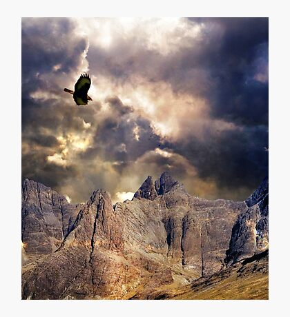 Wonder, Glory and Survival. Photographic Print