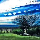 Lockyer Valley UFO's - Laidley Queensland by Neil Ross