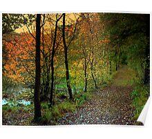 Orange October Leaves Poster