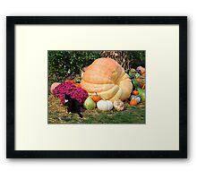 Harvest Display - Longwood Gardens Framed Print