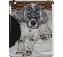 English Setter Puppy iPad Case/Skin