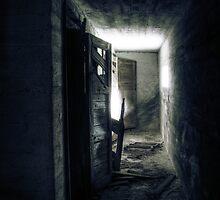 15.10.2010: In the Cellar by Petri Volanen