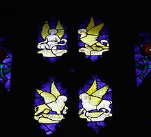 Stained glass window by pamtrezise