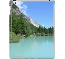Schalisee iPad Case/Skin
