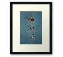 Attack Mosquitos Framed Print
