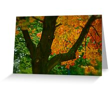Come away with me autumn . by Brown Sugar. Views ( 94 ) Thanks ! Greeting Card
