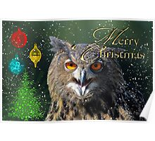 Owl Merry Christmas Card Poster