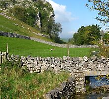 Kilnsey Crag At Last! Straight From The Camera!! by artwhiz47