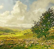 A Yorkshire Dale In Late Summer by patrixpix