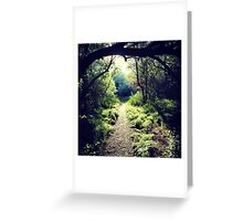 Hiking through the overgrowth from the darkness to the light. Greeting Card