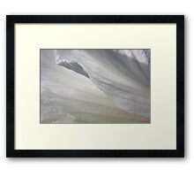 Exquisite lightness Framed Print