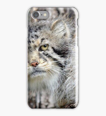 The Original Grumpy Cat! iPhone Case/Skin