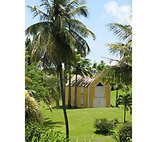 Plantation in St. Kitts Photographic Print