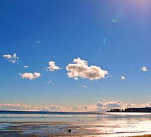 Boundary Bay, BC, Canada by Brenda Boisvert