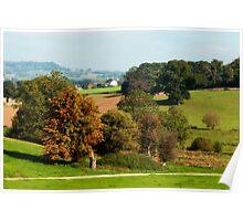 Autumn Scene ~ Escot, Devon Poster