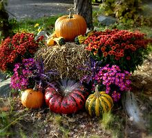 Autumn at Colby Farm by Monica M. Scanlan