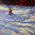 snow shadows by Julia Lesnichy