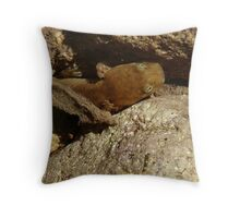 salamander hiding in the water Throw Pillow