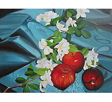 Apples and Cherry Blossoms Photographic Print