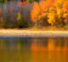 Autumn at Sawmill Lake by Tara  Turner