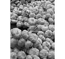 Garlic - Provence, France Photographic Print