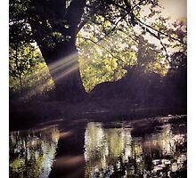 Riverbank Reflections  Photographic Print