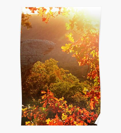 Bit of Light, and Touch of Autumn Colors Poster