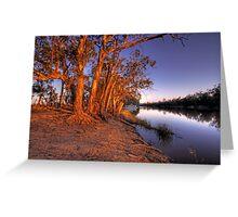 Eucalyptus Sunset - River Murray, Above Renmark, South Australia Greeting Card