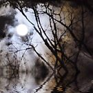 Misty Moonlight by Pat Moore