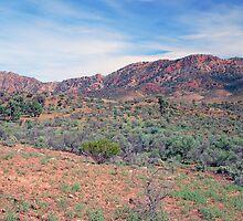 Aroona Valley, Flinders Ranges, South Australia by Adrian Paul